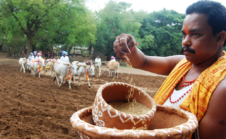 Akshaya Tritiya in Orissa