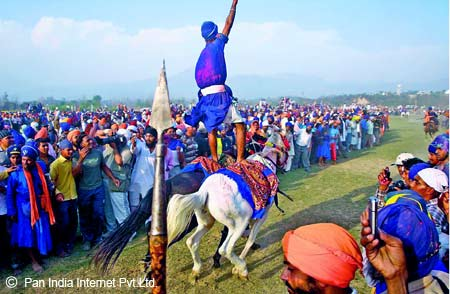 Hola Mohalla Celebrations