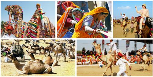 Pushkar Camel Fair Rajasthan