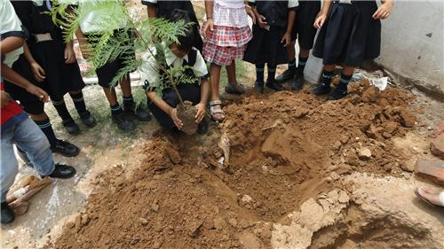 Children plant saplings to celebrate Van Mahotsav