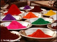 Colours of Holi