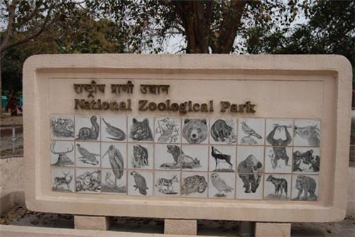 Animals in National Zoological Park, Delhi