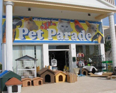Online pet shops cape town